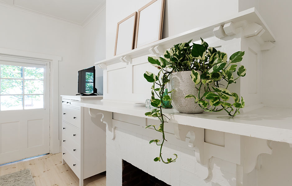 Fireplace mantle with plant decor