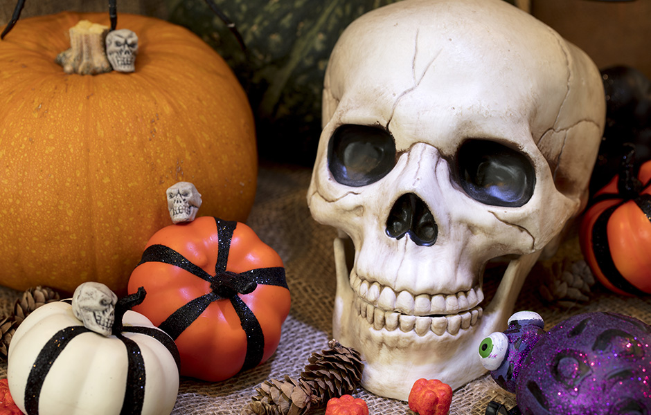 Halloween skull and pumpkins